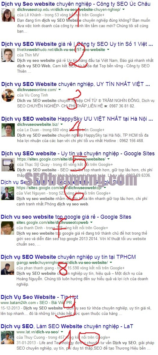 dich vu seo website