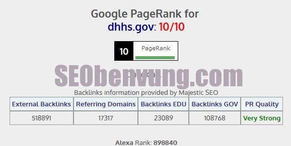 chek page rank