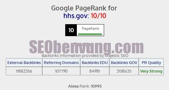 trang có page rank cao