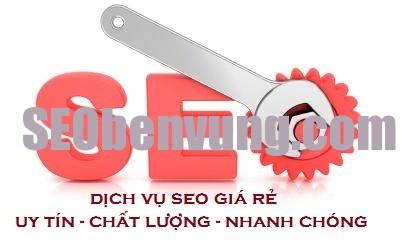 dich-vu-seo-gia-re1