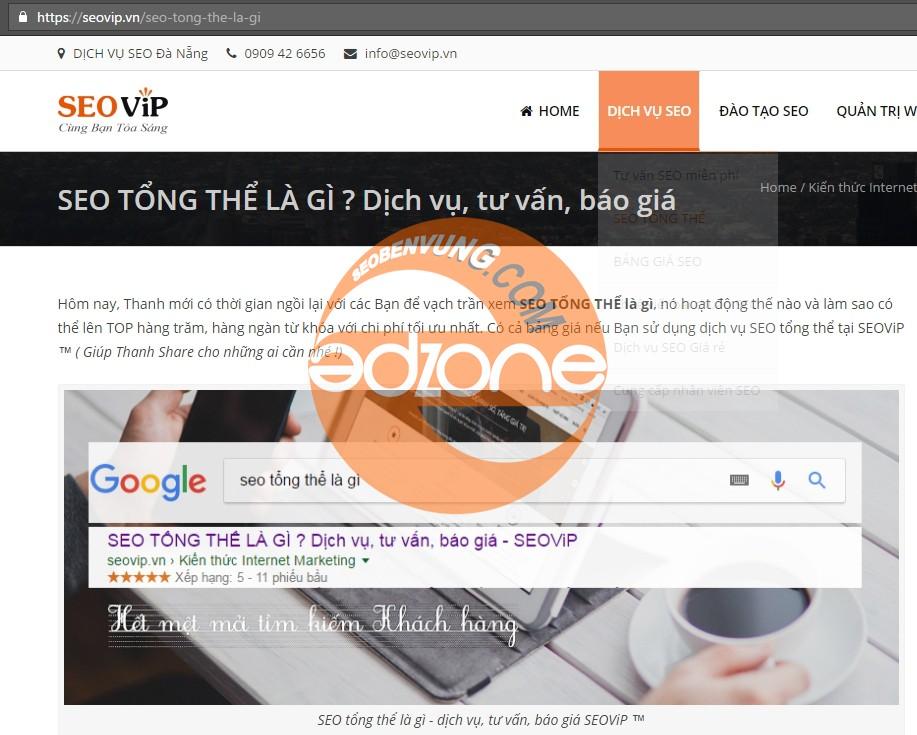 seo tong the SEO vip